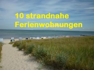 Urlaub Mit Hund Ostsee Ferienwohnungen Ferienhauser